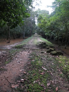 One of our many paths through the jungle as we cycled our way around the Little Circuit