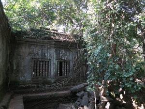 A quiet, lightly-vegetated corner