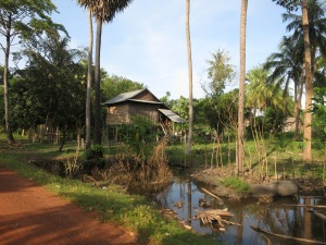 Visions of rural Cambodian life on the journey back from Beng Mealea