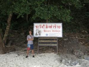 On Monkey Beach, Ko Phi Phi Don