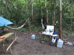 Our campsite, complete with hammocks and bamboo picnic table