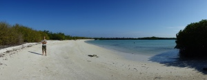 On the beach in the little inlet just beyond Tortuga Bay