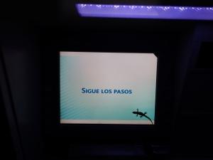 A gecko on the screen of an ATM on Santa Cruz