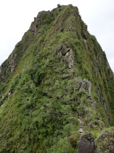 Huayna Picchu, seen from the bottom, after the climb