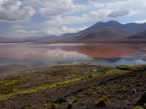A prettily-coloured lake in southern Bolivia